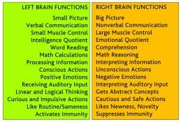 brain april 2011leftrightcolumn