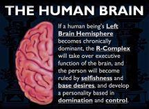 brain19523fa183c2879838dec30bd20504b7--brain-law