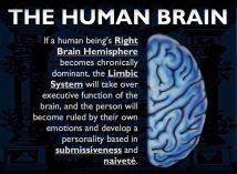 brain39e96d88a50b8545e7b296af4b397282